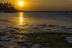 Gouden zonsondergang over de oceaankust at low tide royalty-vrije stock fotografie