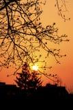 Gouden zonsondergang over het huis Stock Foto's