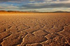 Gouden zout - Zoutmeren grandes/grote salines - salta & jujuy, Argentinië stock fotografie