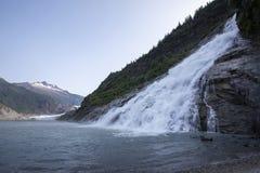 Goudklompjesdalingen en mendenhall gletsjer, Alaska stock foto