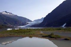 Goudklompjesdalingen en mendenhall gletsjer royalty-vrije stock afbeeldingen