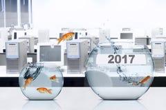 Goudvis die aan aquarium met nummer 2017 springen Stock Afbeeldingen