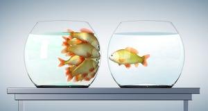 Goudvissen in belemmerd aquarium stock illustratie