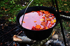 Goulash at cauldron Stock Images