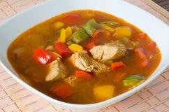 Goulash da galinha Fotografia de Stock