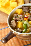 Goulash made from pork with pumpkin Royalty Free Stock Photo