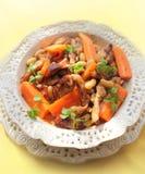 Goulash med grönsaker Royaltyfri Bild
