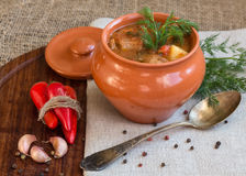 Goulash in the pot. Stew in a clay pot on a wooden board with spices Stock Photography
