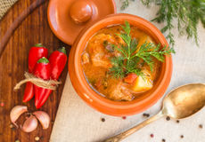 Goulash in the pot. Stew in a clay pot on a wooden board with spices. Top view Stock Images