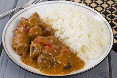 Goulash and Rice Royalty Free Stock Photo