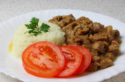 Goulash and rice Royalty Free Stock Photo