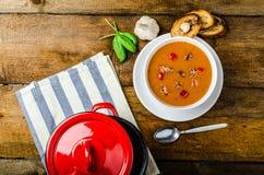 Goulash soup with crispy garlic toast Royalty Free Stock Photos