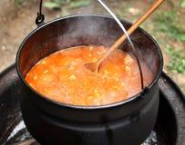Goulash stew στο δοχείο Στοκ εικόνες με δικαίωμα ελεύθερης χρήσης