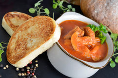 Goulash stew with toasted bread dumplings Royalty Free Stock Images