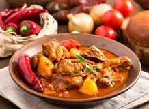Goulash ungherese in piatto Immagine Stock