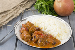Goulash and White Rice stock photos