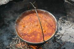 goulashungrare Fotografering för Bildbyråer
