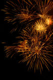 Gould firework explosion in the night sky Firework display Royalty Free Stock Images