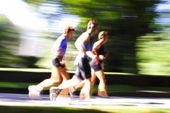 goup biegacze puszyste Fotografia Stock