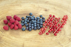 Goup of raspberries, bilberries and red currants placed on a woo Stock Photo