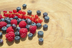 Goup of raspberries, bilberries and red currants placed on a woo Royalty Free Stock Image