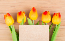 Goup of Tulips Stock Image