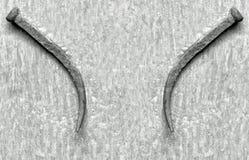 Goupilles ridées Photo stock