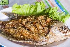 被油炸的gourami鱼 库存图片