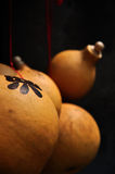 Gourd Royalty Free Stock Image