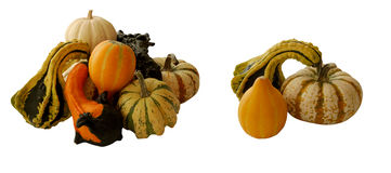 Gourd arrangements Stock Image