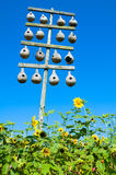 Gourd birdhouses and sunflowers Stock Photography