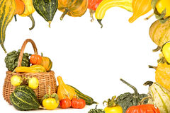 Gourd border Stock Images