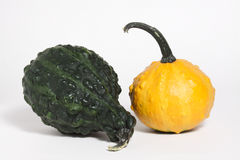 Gourd Duo Royalty Free Stock Image