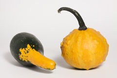 Gourd Duo Royalty Free Stock Photos