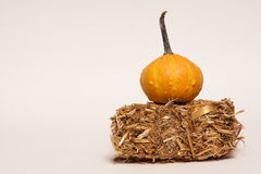 Gourd On Hay. A yellow gourd on mini hay bale Royalty Free Stock Photo