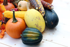 Gourd and pumpkin Stock Photography