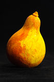 Gourd still life Royalty Free Stock Image