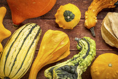 Gourd and winter squash collection Stock Photo