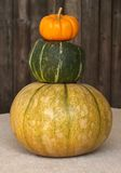gourds падения штабелировали Стоковое Фото