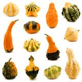 Gourds Royalty Free Stock Images