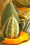 Gourds fotografia de stock