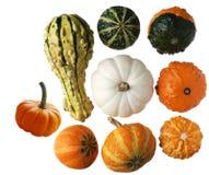 Gourds fotos de stock royalty free