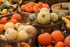 Gourds. Bushel baskets filled with many different types of gourds Royalty Free Stock Photo