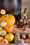 Gourds and apples Stock Photography