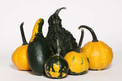 Gourds Arrangement Royalty Free Stock Photo