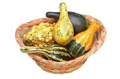 Gourds in Basket. Assorted Gourds in a Basket isolated over white royalty free stock photos