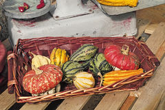 Gourds. Basket with some ornamental gourds Stock Photos