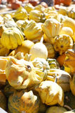 Gourds in a bunch royalty free stock image