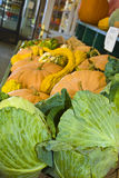 Gourds and Cabbage Stock Images