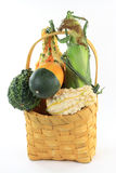 Gourds and corn in basket. Stock Image